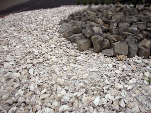 Myco Supply Bulk Crushed Oyster Shell and Oyster Shell Flour