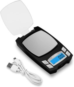 portable pocket scale