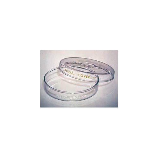glass petri dishes